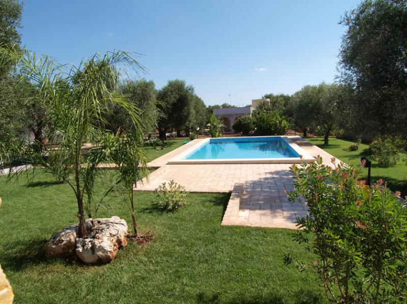 The garden with shared pool