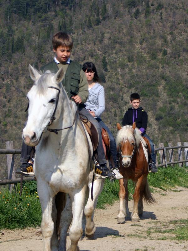 farm holiday horses riding