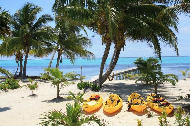 Kayaks and beach