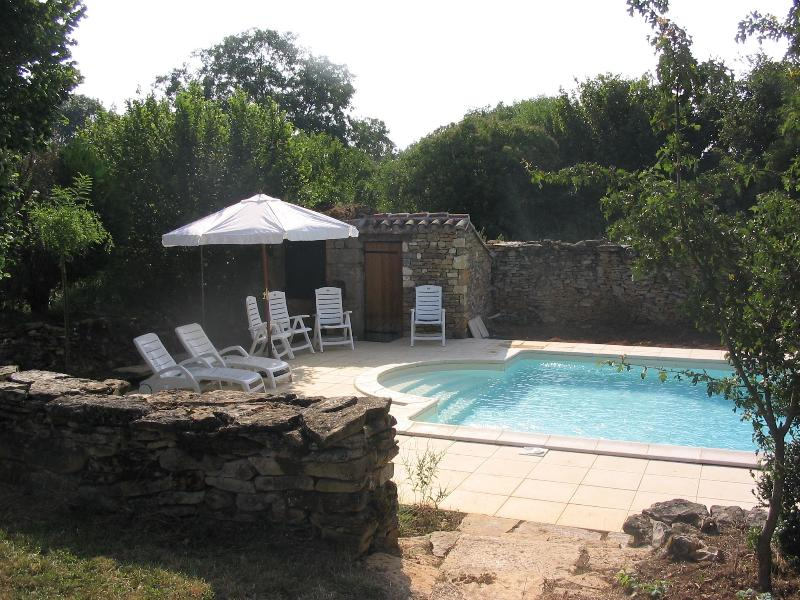 Private pool leading from the spacious, mature garden