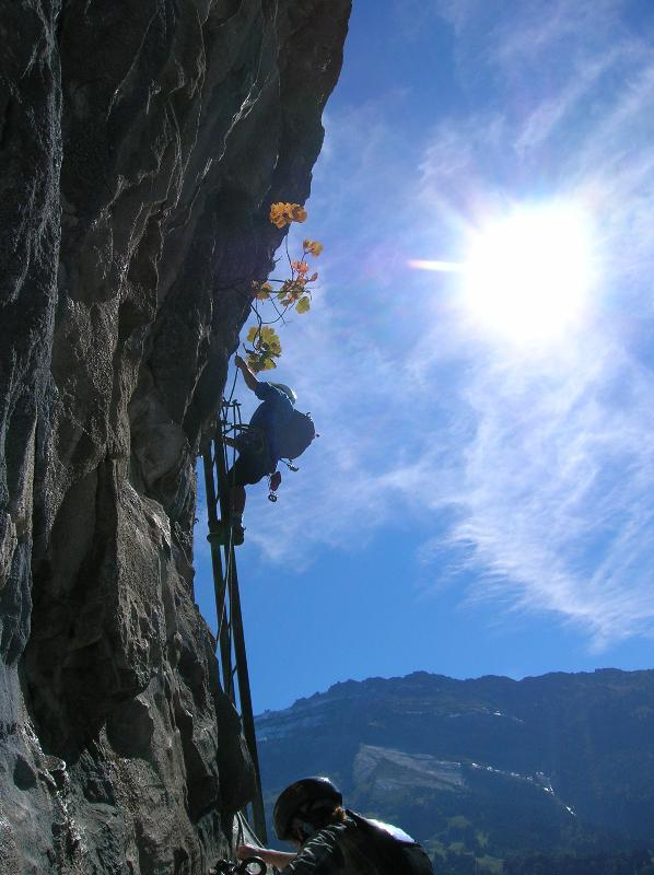 The Via Ferrata in Sixt - bring your head for heights!!