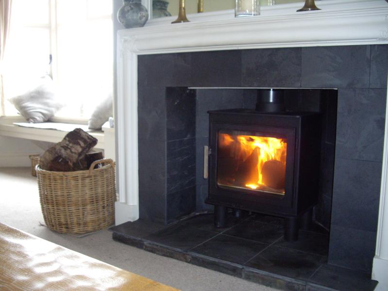 Here is our new wood burning stove!