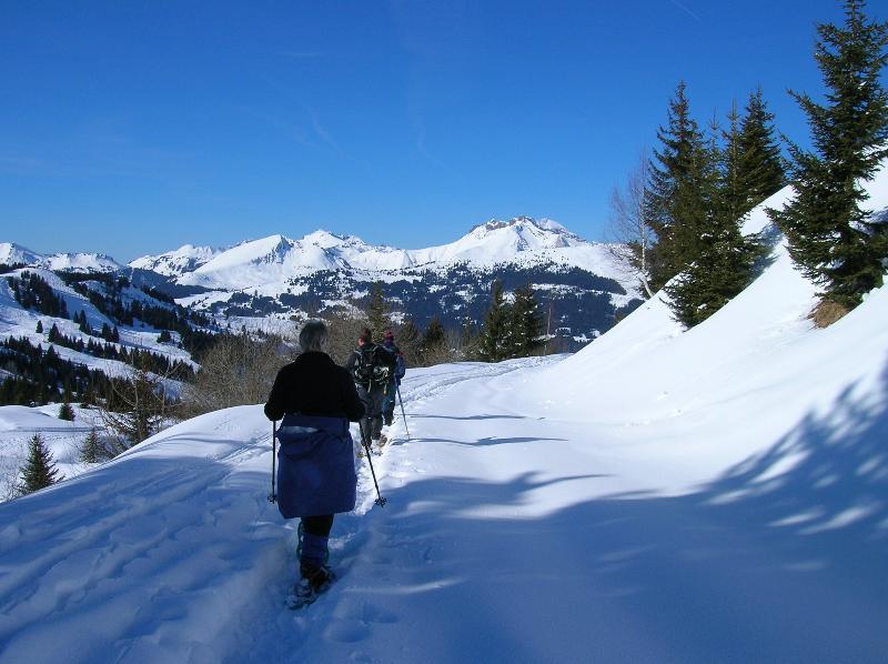 Walking in a winter wonderland!!