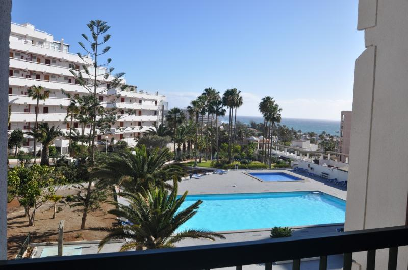 view from the terrace : the swimming pool and sea view in background