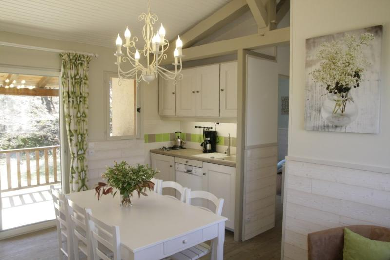 Domaine de Cournet Haut - 'Le Saule', holiday rental in Saint Pompon