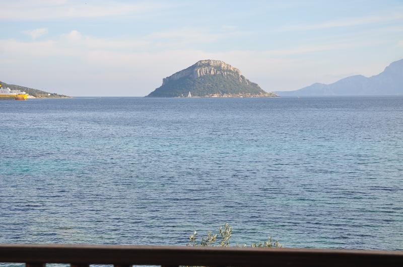 DOLPHIN  2, holiday rental in Golfo Aranci