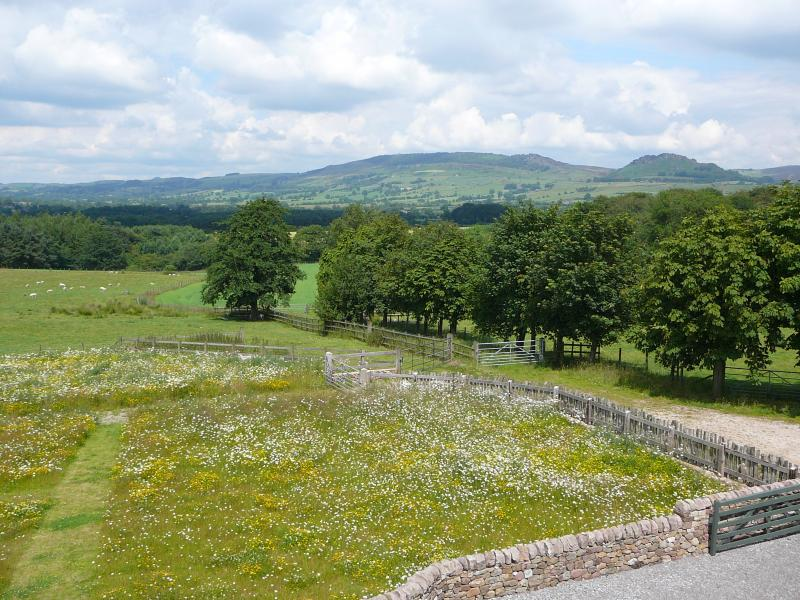 Amazing views - over wildflower meadow, towards the Peak District National Park & The Roaches hi