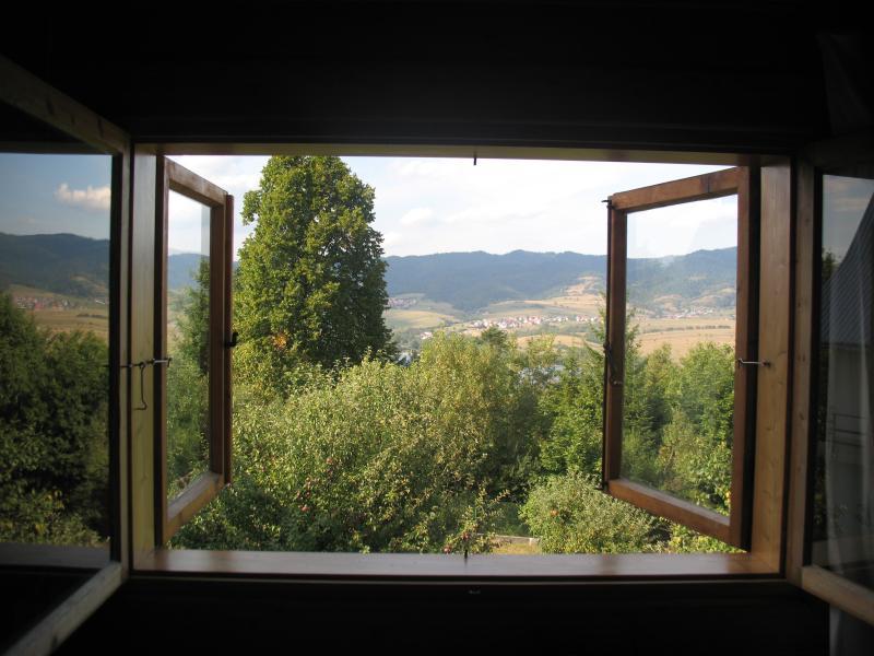 Het uitzicht op het meer en Gorce Nationaalpark van de rug slaapkamer.