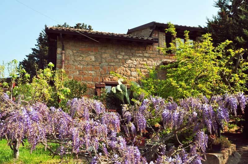La Casa sulla Collina d'Oro, vacation rental in Aidone