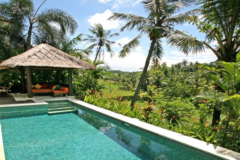 Pool, sala and views across terraces