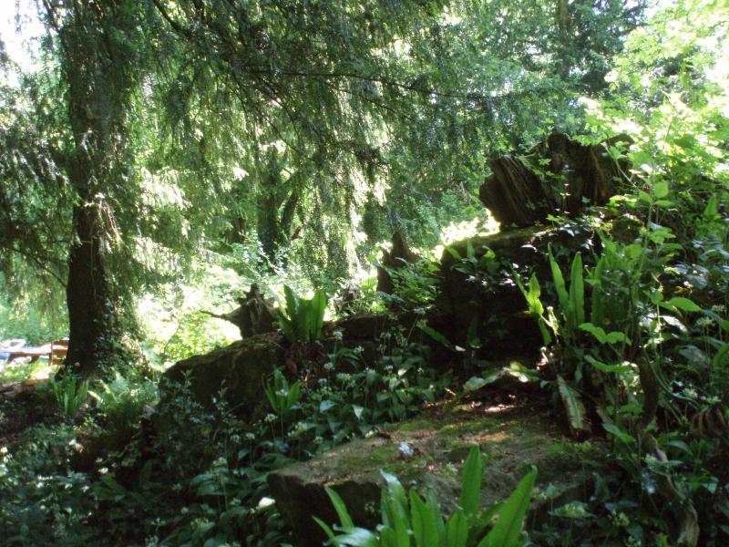 Badgers End Cottage is voorzien van een eigen spectaculaire oude natuurlijke bossen.