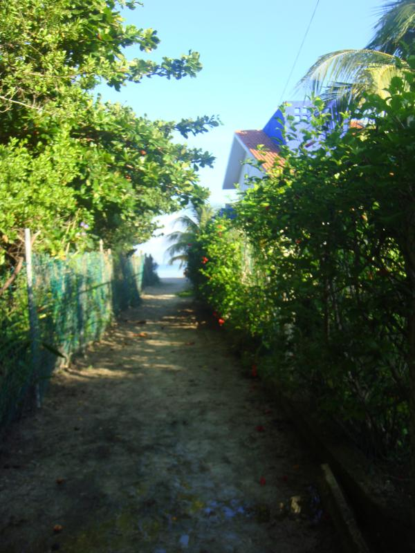 Path access to beach