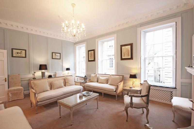 The stunning drawing room
