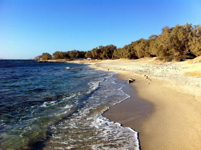 White sand,turquoise water. So many beaches in Naxos like this. Relax!
