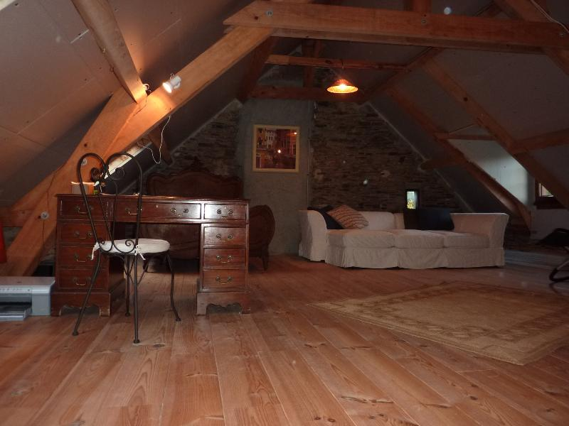 Attic Loft - Owners private space, opened for guests by request and extra charge.