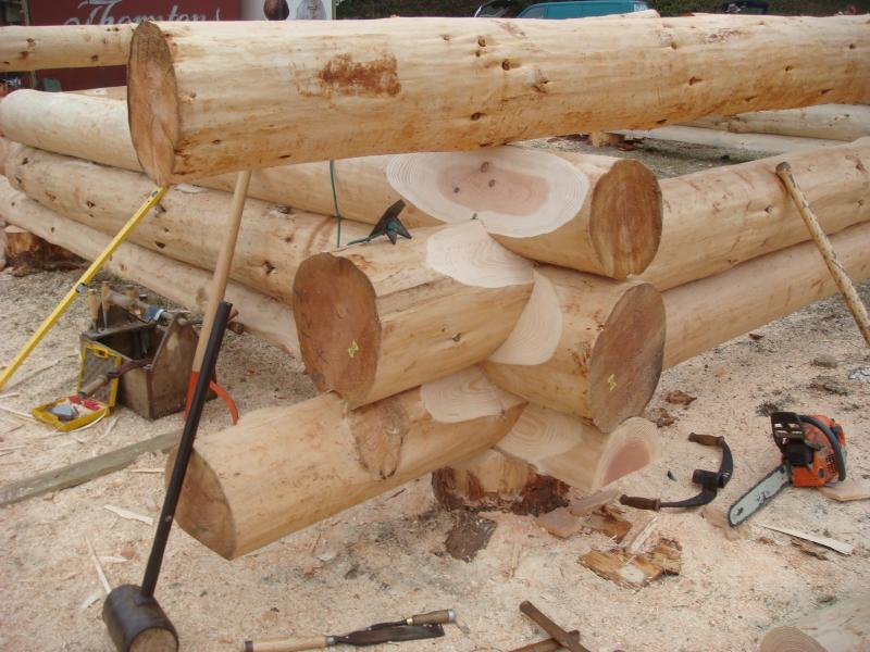 Hand building Fir Lodge