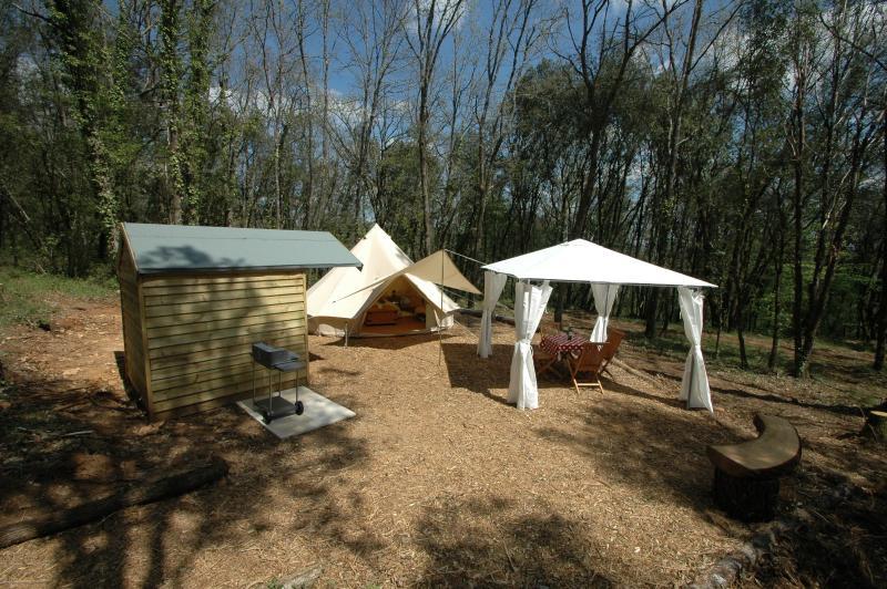 Truffe Noir's site set into wonderful woodland