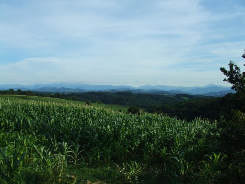 Pyrenees foothills