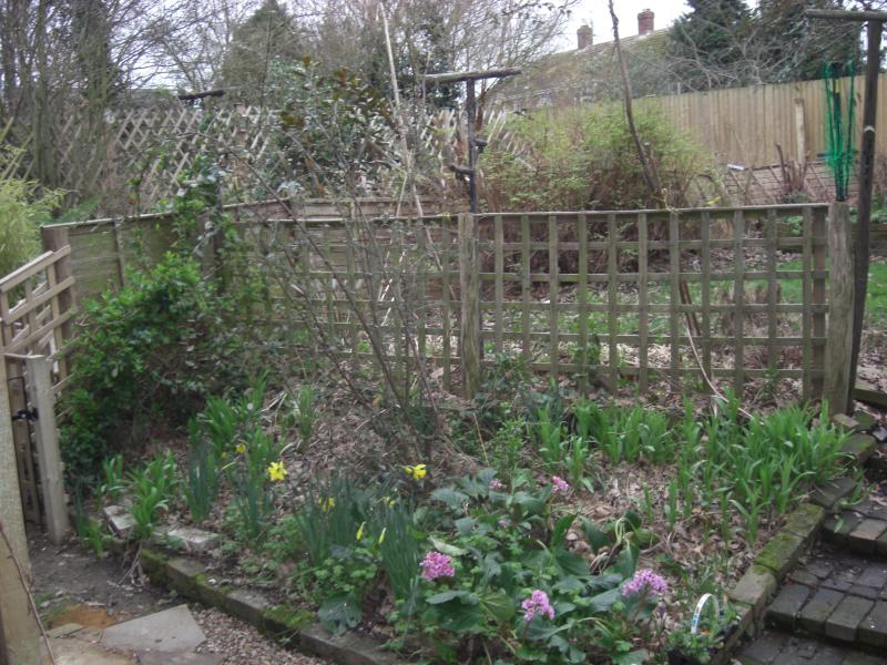 The pretty cottage garden bank, leading to lawn and sunken patio area