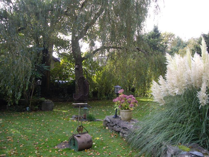 An Autumn garden view