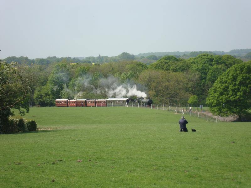 View of the heritage railway from garden