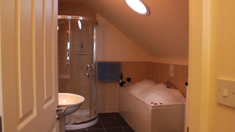 O len suite para o quarto principal com uma banheira de hidromassagem spa banho e sepreate chuveiro luxo