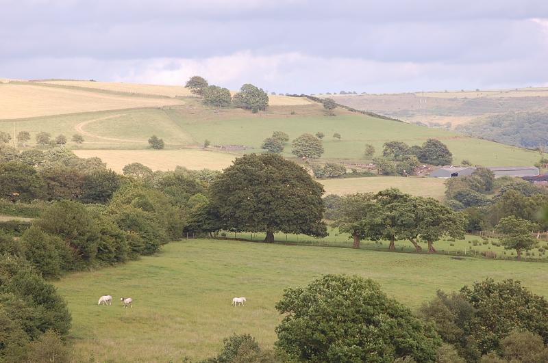 MILES OF OPEN COUNTRYSIDE