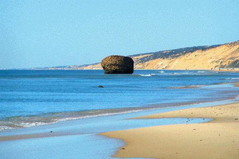 panorámica playa matalascañas