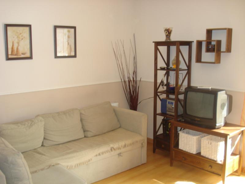 Apartamento de 1 dormitorio..., holiday rental in Broto
