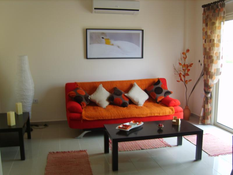 The Lounge Area of The Apartment