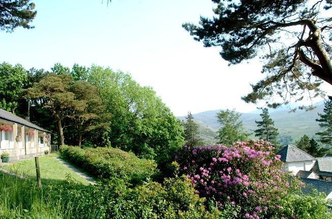 plas heulog holiday cottages garden
