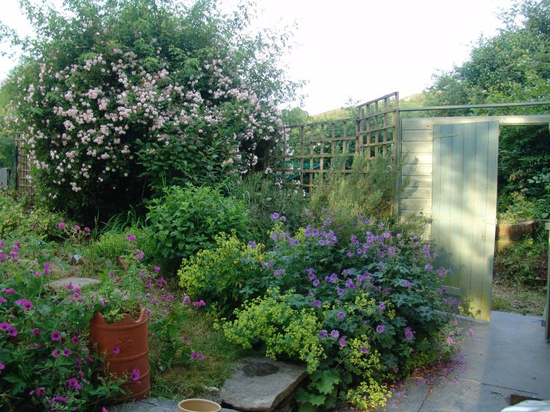Cottage garden; well-planted with seasonal variety