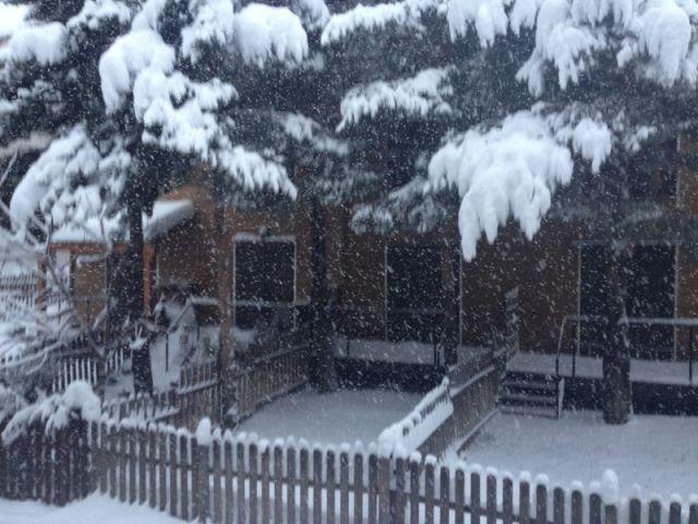 nevada febrero 2013