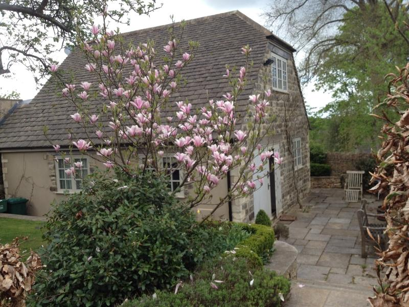 Well Close Cottage in the Springtime
