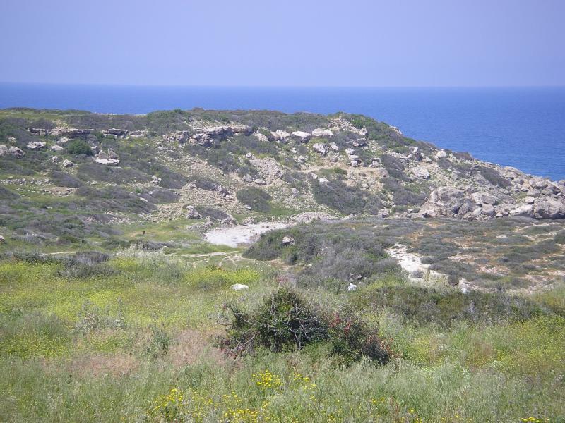 coastal view from villa