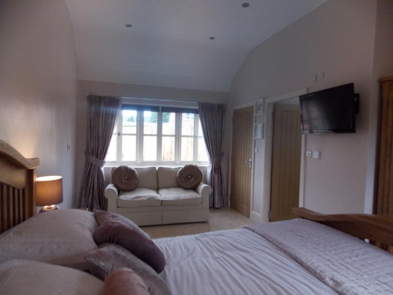 1 dormitorio con sofá cama