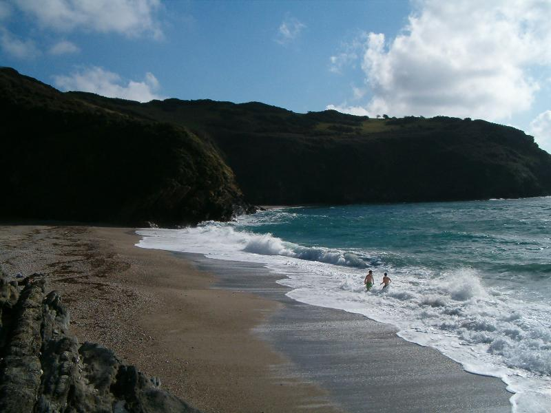 Lantic Bay near to Polruan