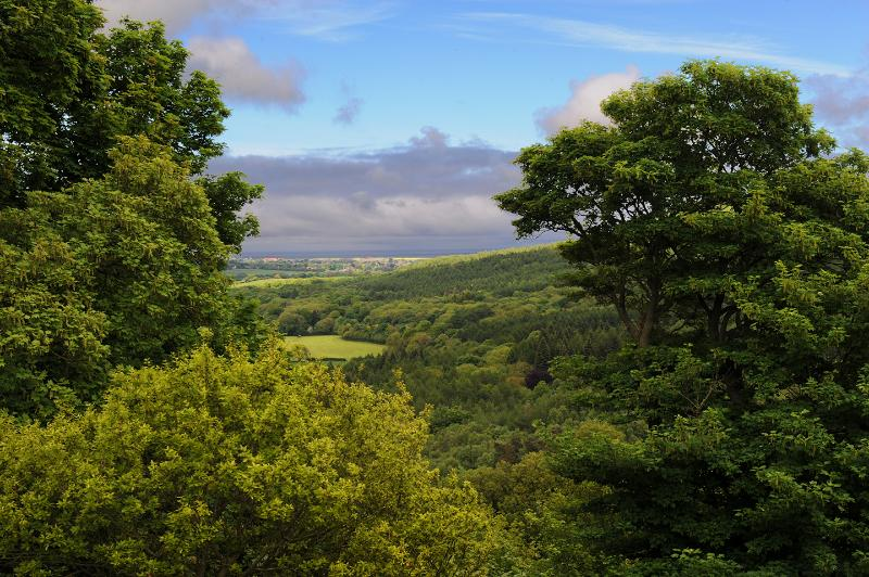 View from farm over Forge Valley to sea