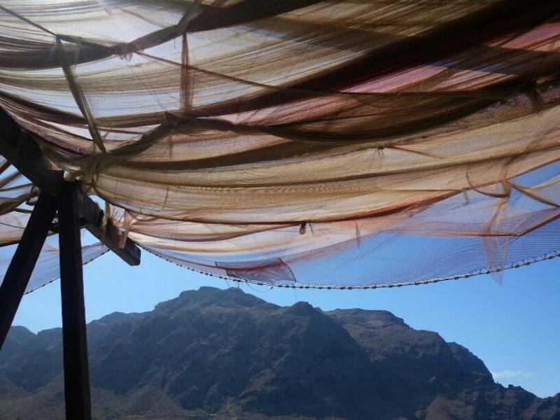 Vista del Parqe Rural de Teno desde El Burgado en Buenavista
