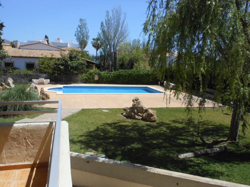 piscina desde la terraza