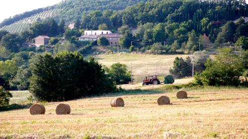 A quinta é um cenário tranquilo, entre campos, olivais e das montanhas da Úmbria maravilhosas