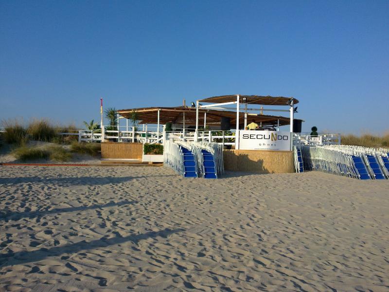Sand beach (spring)