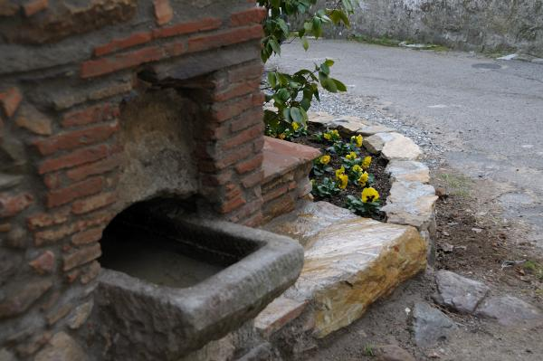 An ancient water trough on the property