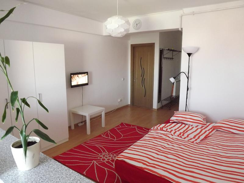 Studio behind metro station, holiday rental in Jilava