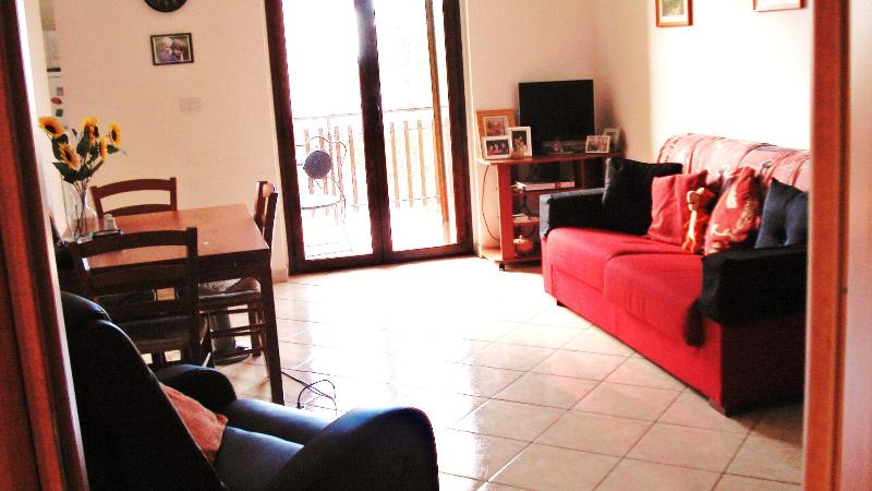 living room,comfortably furnished with sofa bed easy chairs,dining suite.TV DVD.ETC