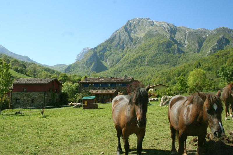 Nuestros caballos, pradera complejo rural Valle de Bueida