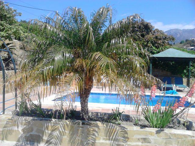 Casa Rural de 90 m2 para 4 personas en Frigiliana, holiday rental in Frigiliana