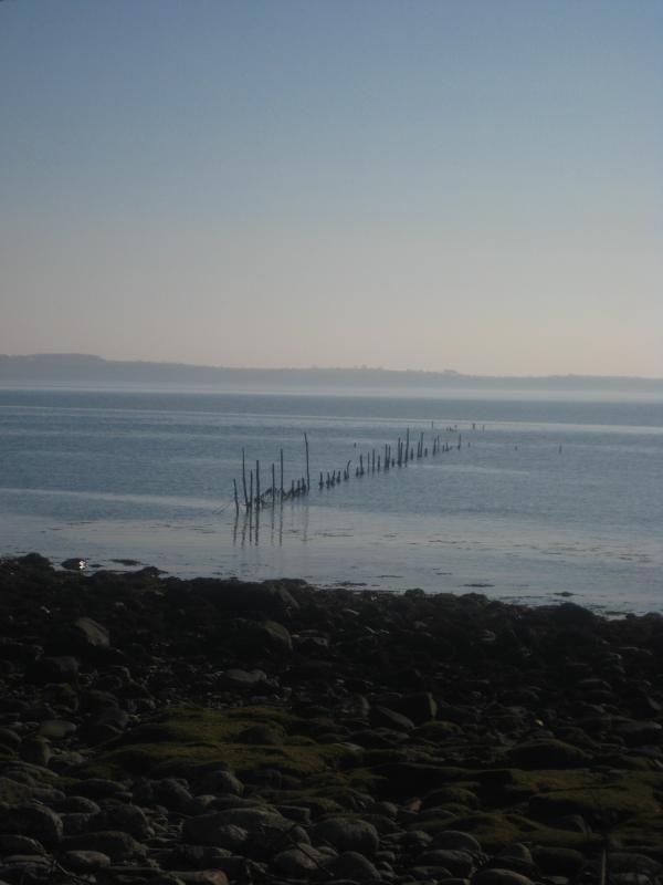Fishing nets at the shore
