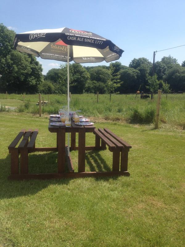 Pranzo nel giardino posteriore di Blackberry come raggiungere temperature di giugno 26 gradi Celsius all'ombra!