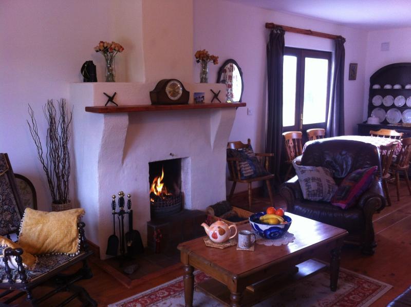 Open space soggiorno/sala da pranzo con zona cucina sul retro con vista del bosco